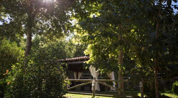 Casas rurales El Rincon de Castilla-14